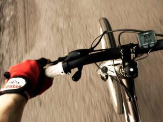 обои За рулем велосипеда фото