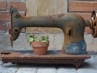 обои Старая швейная машинка и растение фото