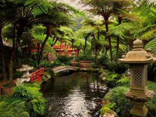 обои Японский пруд с декорациями фото