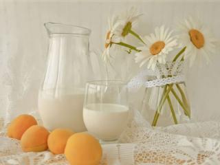 обои Натюрморт - Натюрморт - Абрикосы с молоком фото