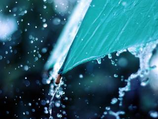 обои Дождь и зонт фото