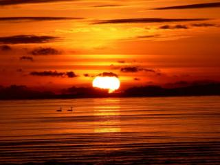 обои Красный закат на Лебяжьем острове фото