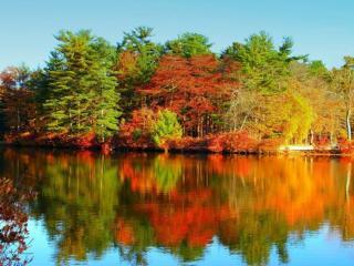 обои Озеро и осень фото