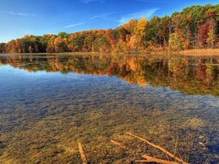 обои Разноцветная осень у реки фото