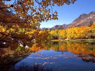 обои Осень предгорья фото