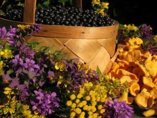 обои Ягоды,   грибы и полевые цветы фото