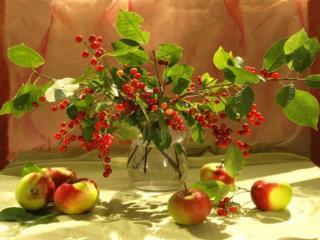обои Натюрморт - Ягодно-яблочное настроение фото