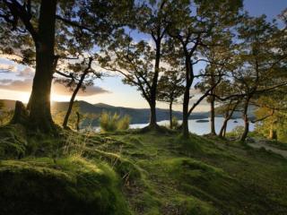 обои Озеро,   горы и редкий лес фото