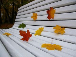 обои Осенняя скамейка фото