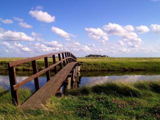 обои Деревянный мостик на маленькой речке фото