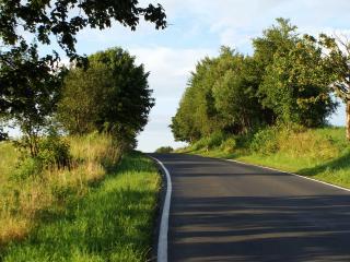 обои для рабочего стола: Зеленая обочина дороги