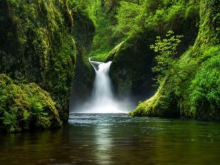 обои Водопад среди заросших скал фото