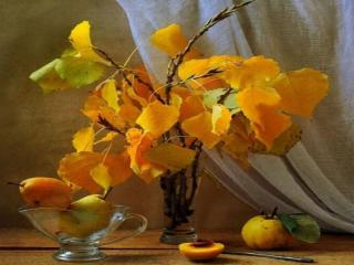 обои Натюрморт - Жёлтые листья осины и груши фото