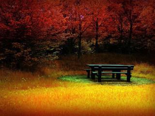 обои Стол,   лавочки и осень фото