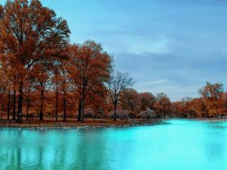 обои Парк у речки фото