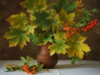 обои Натюрморт - Кленовые листья и рябина в кувшине фото