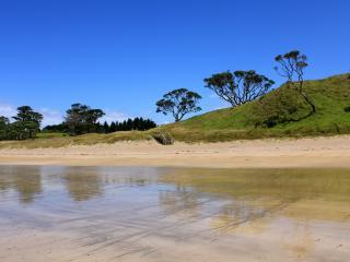 обои У берега мелководье фото