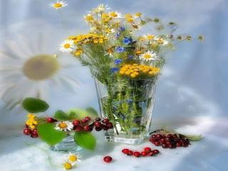 обои Натюрморт - Ягодно-цветочное наваждение фото