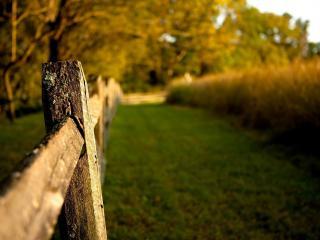 обои Старый деревяный забор фото