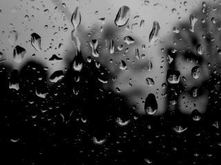 обои Капли воды на темном фоне фото