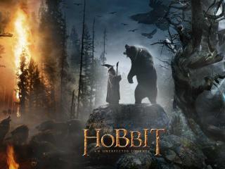 обои Фильм Хоббит Маг и медведь