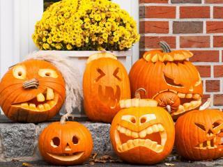 обои Тыквы для Хэллоуина
