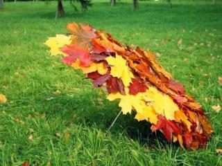 обои Осенний зонт фото