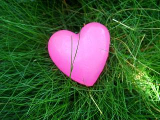 обои На траве розовое сердечко фото