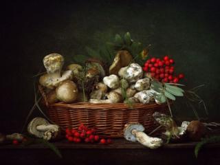 обои Натюрморт - Рябиново-грибной фото