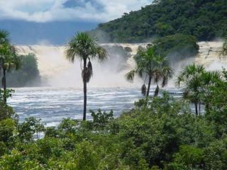 обои Тропический водопад фото
