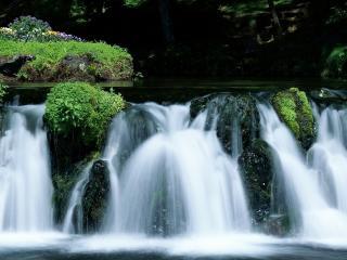 обои Небольшoй водопад на реке фото
