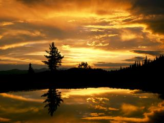 обои Отражение золотого заката в озере фото