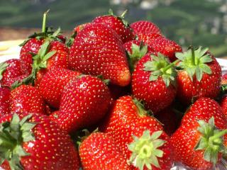обои Красная ягода-клубничка фото