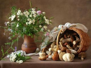 обои Цветочно-грибной натюрморт фото