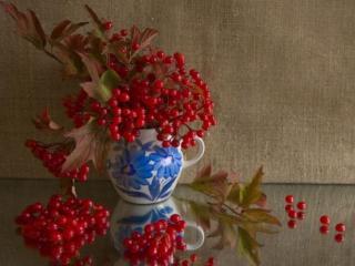обои Натюрморт - Красные гроздья калины в кувшине фото