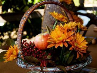 обои Осенний букет фото