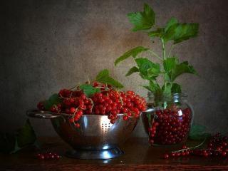 обои Натюрморт - Красная смородина в чаше и банке фото