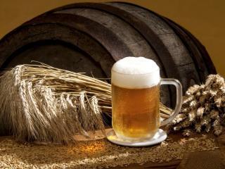обои Пиво,   рожь и хмель фото