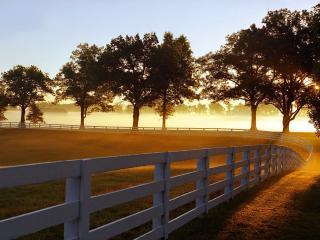 обои Забор загона для лошадей фото