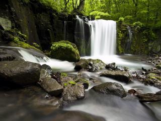 обои Нeбольшой водопад и мокрые камни фото