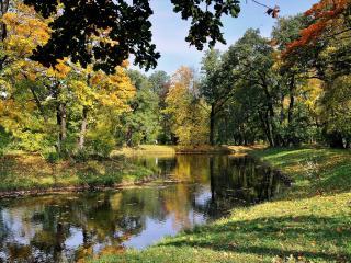 обои Осень красками рисует фото