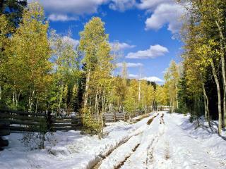 обои Глубокий снег в осеннюю пору фото