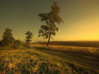 обои для рабочего стола: Дорога среди полей
