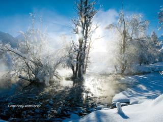 обои Зимнее солнце фото