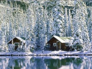 обои Зима на берегу озера фото