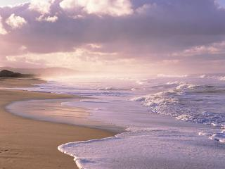 обои Берег моря фото