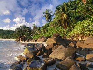 обои Каменистый берег трoпический фото