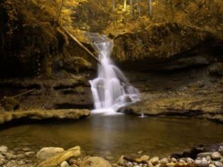 обои Маленький водопад в лесу фото