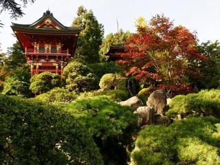 обои Японские домики на крутом склоне фото