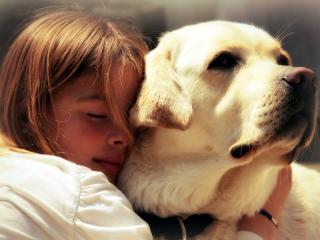 обои Девочка с большой собакой фото